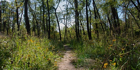 Second Saturday Workday at Wege Foundation Natural Area tickets