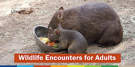 CANCELLED: Wildlife Encounters for Adults - North Lakes Library tickets