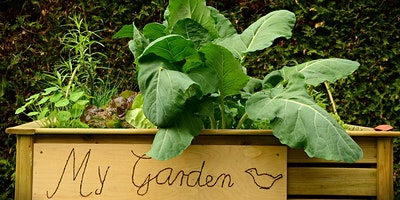 Create your own raised garden bed