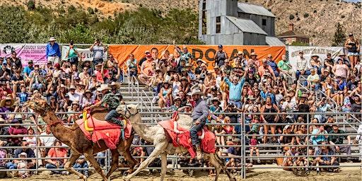 61st Annual International Camel & Ostrich Races