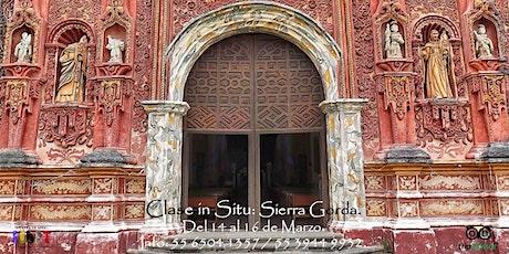 Clase in Situ: Sierra Gorda. entradas
