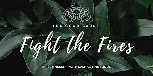 Fight the Fires by THE GOOD CAUSE