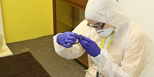 Young Persons CSI Experience