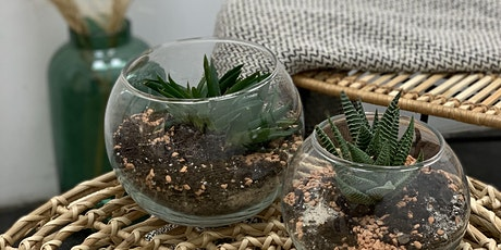 DIY-Workshop: Sukkulenten-Terrarium Tickets