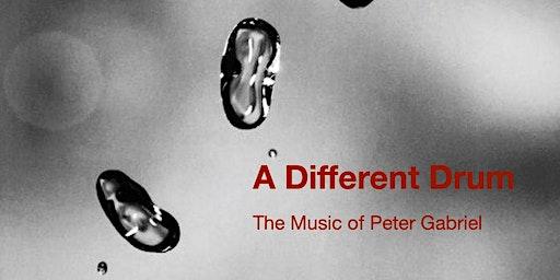 Peter Gabriel Tribute - A Different Drum