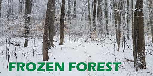 Frozen Forest Off Road Run