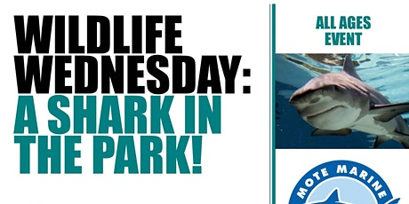 Wildlife Wednesday: A Shark in the Park tickets