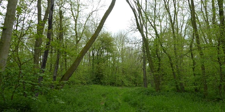 Tree Health Event - Forestry Commission tickets
