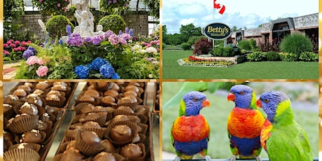 Niagara Day Trip  from Norfolk and Haldimand County tickets