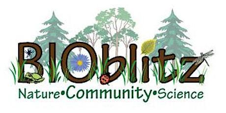 5th Annual Urban BioBlitz tickets