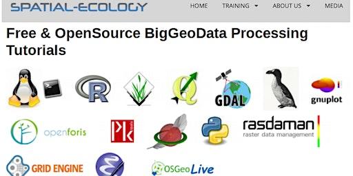 Matera Summer School 2020: Geocomputation using free & open source software