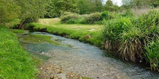 Have a go: River Restoration