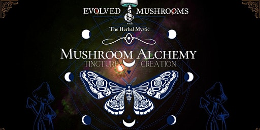 Mushroom Alchemy and Tincture Creation
