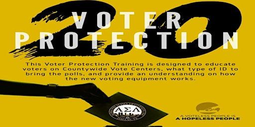 Alpha Phi Alpha - Voter Protection 2.0