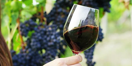 Learn About Wine: An Introduction to Wine tickets
