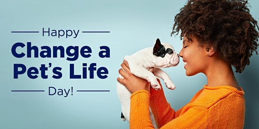 Change A Pets Life Day