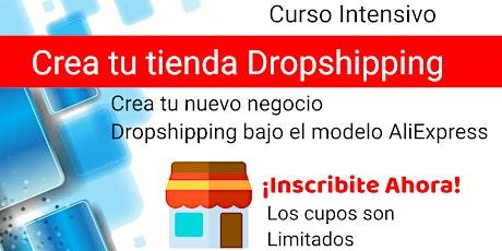 Curso de Dropshipping - Como crear una tienda Dropshipping entradas