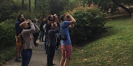 Bruin Audubon Society Winter Birding Walks tickets