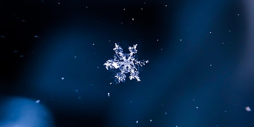 Illuminated Family Snowflake Scavenger Hunt