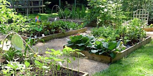 Garden Planning 101: A Year in the Garden