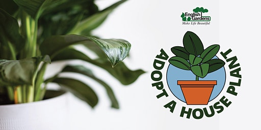 Adopt A House Plant