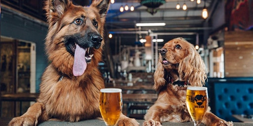 BrewDog's Celebration for Animal Aid Society