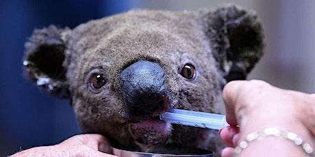 Australia Day bushfire wildlife rescue ride tickets