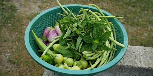 Easy Peas-y Vegetable Gardening
