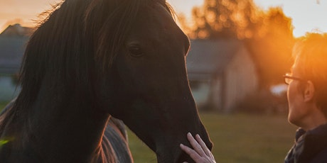 Versatile Leadership: An Equine-Guided Experience  tickets