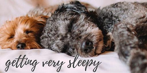 Getting Very Sleepy