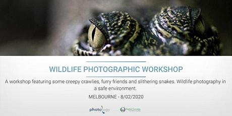 Wildlife Photographic Workshop - 08/02/2020 - Melbourne tickets