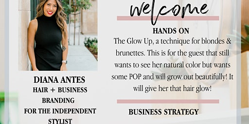 Diana Antes Hair hands-on & business branding Jan 19