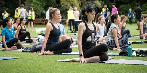 O-Week Yoga on the Grass