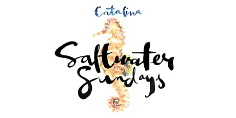Saltwater Sundays - 9th February tickets