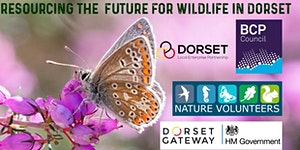 Resourcing the Future for Wildlife in Dorset