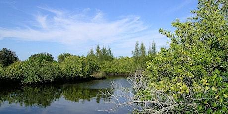 EcoWalk: Unique Preserves of Sarasota County: Curry Creek East tickets