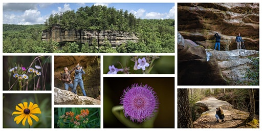 Weekend Photography Workshop at Pickett State Park!