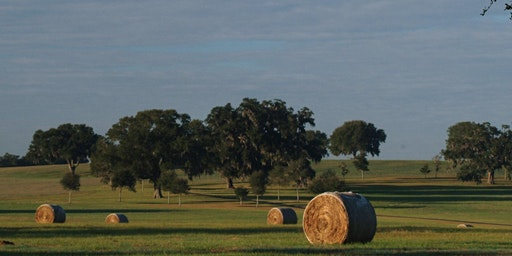 Suwannee Valley Agricultural Outlook Conference