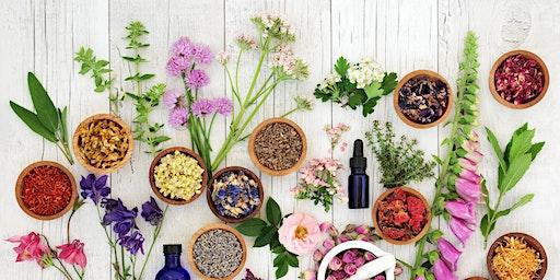 Free Wellness Class: Herbs 101 in Ocean