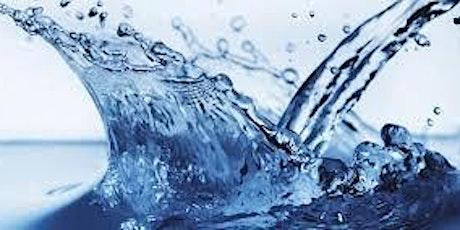 L'acqua l'Oro del 21° secolo - Introduzione alla Blue Economy biglietti