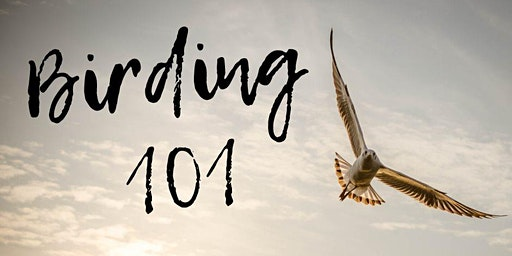 Birding 101 Workshop with Detroit Audubon