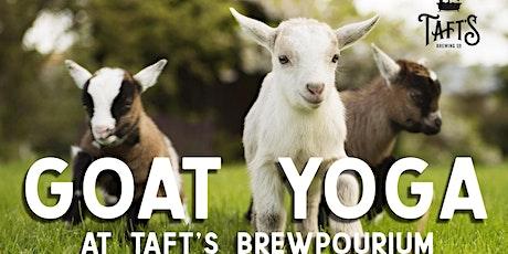 Goat Yoga at Taft's tickets