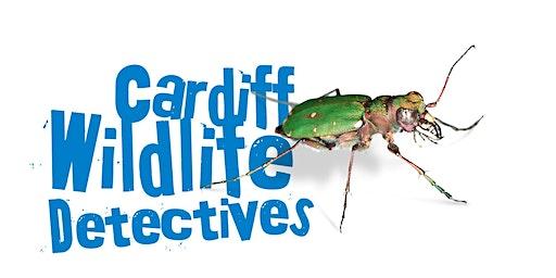 Cardiff Wildlife Detectives - Ditectifs Bywyd Gwyllt Caerdydd