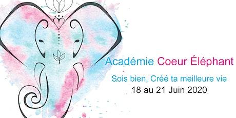 Académie Coeur Éléphant - Session Juin 2020 billets