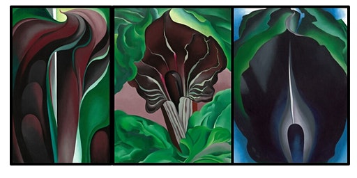 Georgia O'Keeffe & Modern Art Tour at the National Gallery of Art