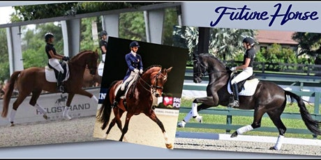 Dressage Horse Buying Trips to Wellington, Florida tickets
