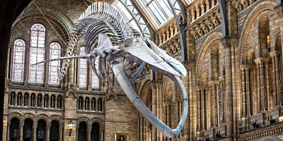 The National History Museum Quiz with 20% off at t