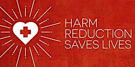 Harm Reduction BASICS for Peers