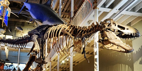 The National Museum of Scotland Quiz with 20% off at the Treasure Pub tickets