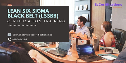 LSSBB Certification Training in Dubuque, IA